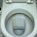 Sanitaerreinigung2.jpg